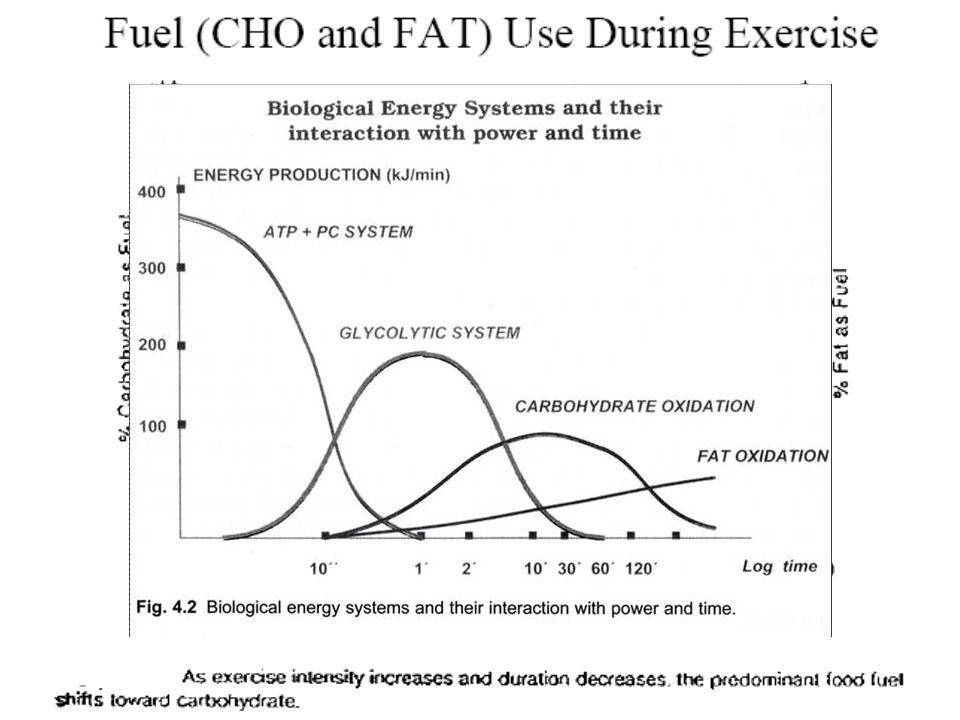 การใช้พลังงานจากแหล่งต่างๆของ ร่างกาย คนทั่วไป นักกีฬา มาราธอน