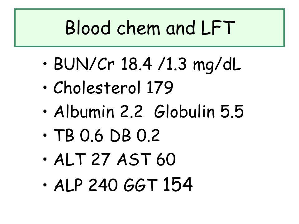 Blood chem and LFT BUN/Cr 18.4 /1.3 mg/dL Cholesterol 179 Albumin 2.2 Globulin 5.5 TB 0.6 DB 0.2 ALT 27 AST 60 ALP 240 GGT 154