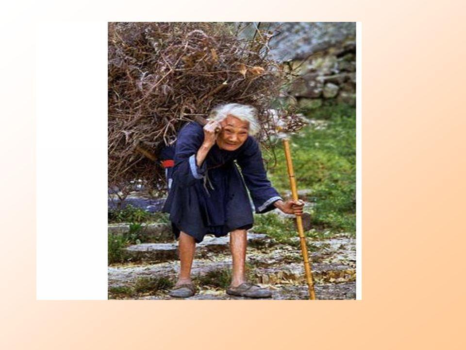 ผู้สูงอายุ และความชราภาพ วัยสูงอายุ หรือ วัยชรา ถือว่าเป็น ระยะสุดท้ายของชีวิต ซึ่งเป็นพัฒนาการ ของสิ่งชีวิต มีการเปลี่ยนแปลงที่ดำเนิน ไปสู่ความเสื่อมของร่างกาย จิตใจ โดยทั่วไปถือว่าเริ่มตั้งแต่อายุ 60 ปีขึ้นไป ความชราภาพ - เป็นการเปลี่ยนแปลงในระบบสิ่งมีชีวิต - เป็นความเสื่อมในการรักษาสภาวะสมดุลของร่างกาย - เป็นการเสื่อมที่เกิดอย่างต่อเนื่อง - เป็นการเปลี่ยนแปลงที่มีการวางโปรแกรมตั้งแต่เริ่มปฏิสนธิ