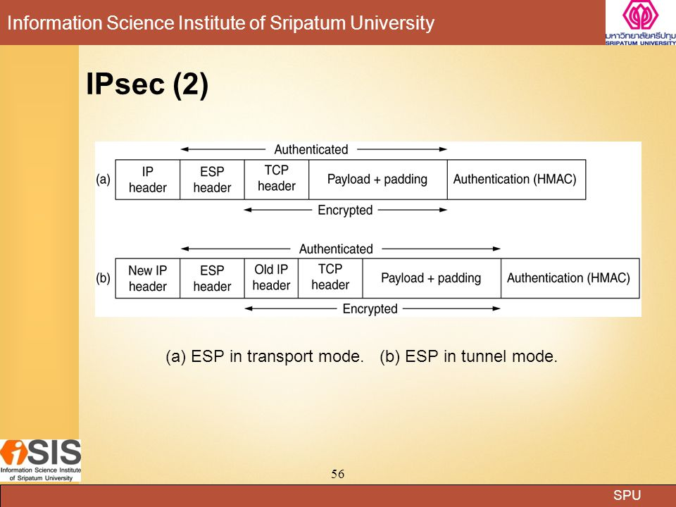 SPU Information Science Institute of Sripatum University 56 IPsec (2) (a) ESP in transport mode. (b) ESP in tunnel mode.