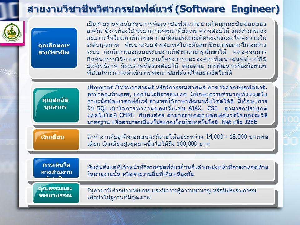 สายงานวิชาชีพวิศวกรซอฟต์แวร์ (Software Engineer) คุณลักษณะ สายวิชาชีพ เป็นสายงานที่สนับสนุนการพัฒนาซอฟต์แวร์ขนาดใหญ่และซับซ้อนของ องค์กร ซึ่งจะต้องใช้