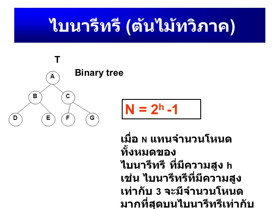 ไบนารีทรี ( ต้นไม้ทวิภาค ) A BC DEF G Binary tree T N = 2 h -1 เมื่อ N แทนจำนวนโหนด ทั้งหมดของ ไบนารีทรี ที่มีความสูง h เช่น ไบนารีทรีที่มีความสูง เท่