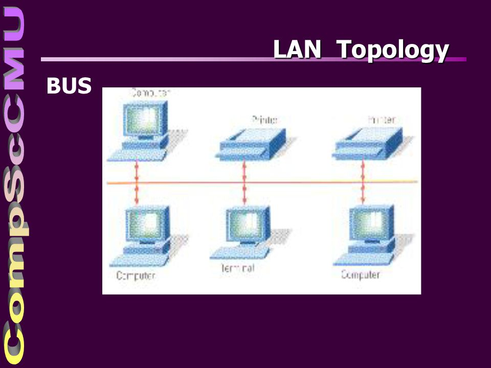 LAN Topology BUS
