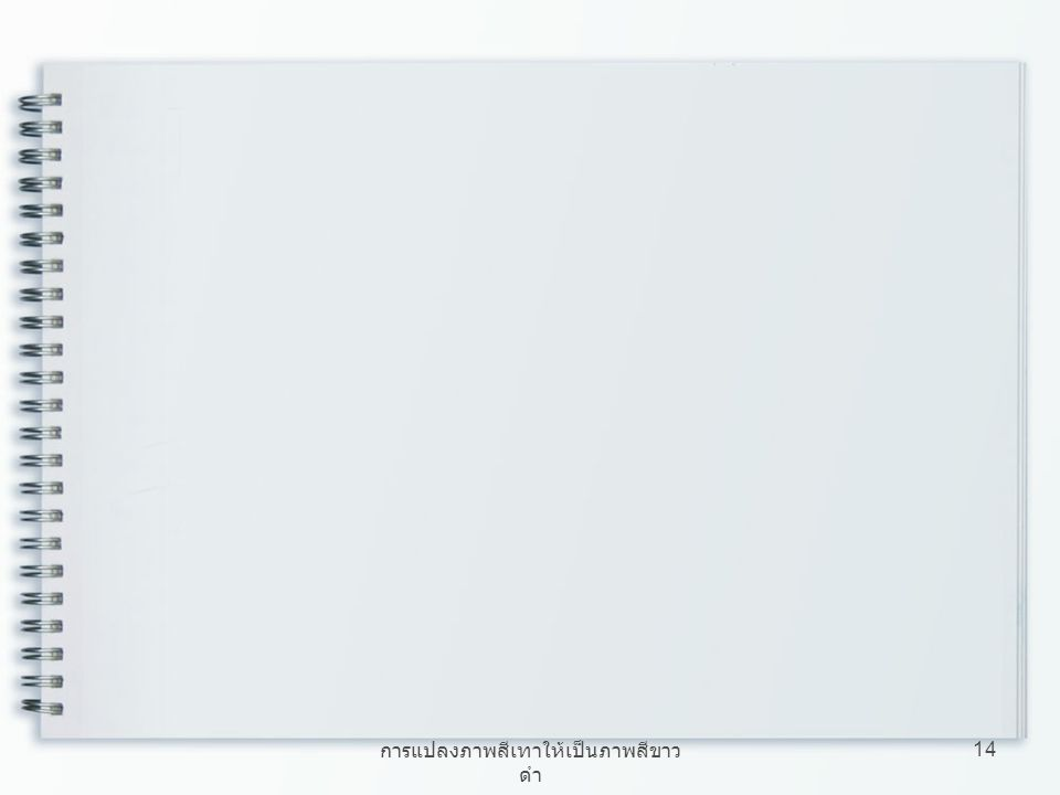 การแปลงภาพสีเทาให้เป็นภาพสีขาว ดำ 14