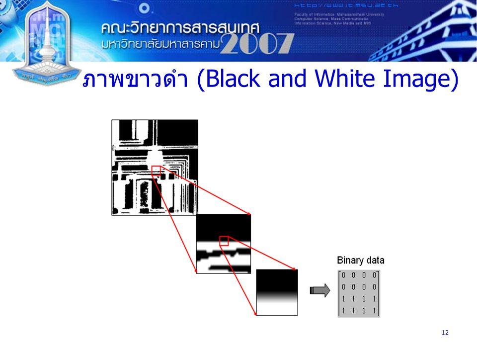 12 ภาพขาวดำ (Black and White Image)