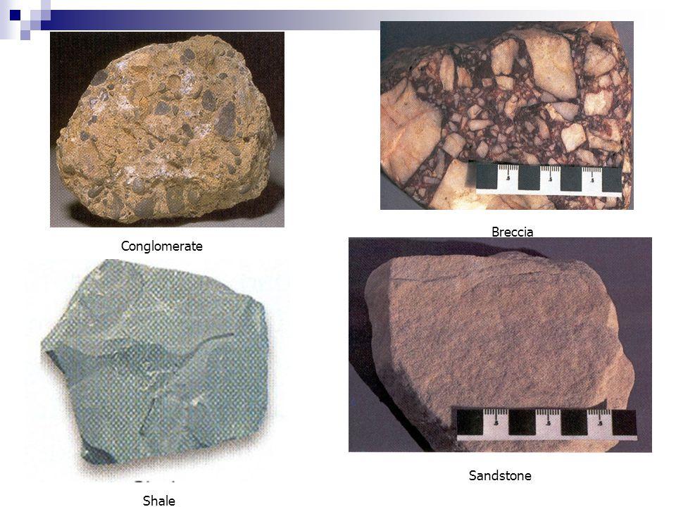Shale Breccia Sandstone Conglomerate