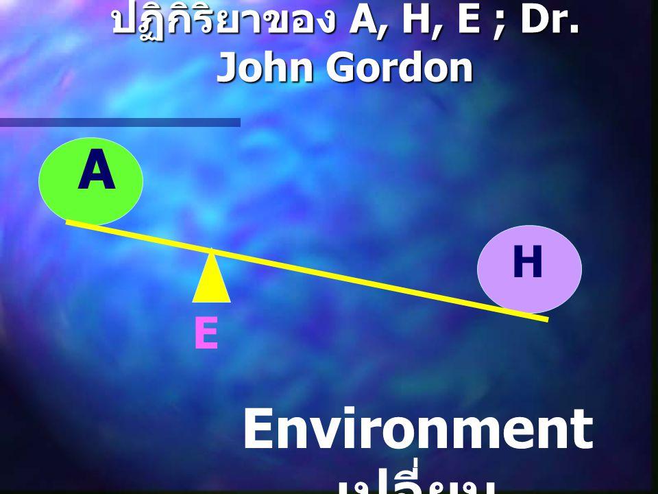 ปฏิกิริยาของ A, H, E ; Dr. John Gordon A H E Environment เปลี่ยน