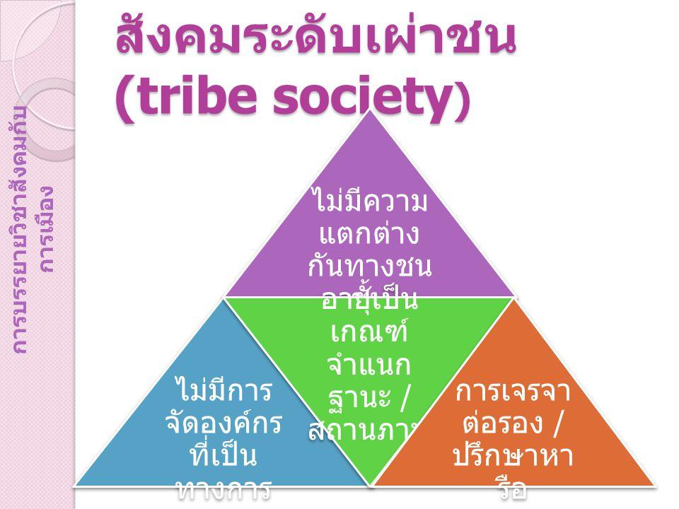 สังคมระดับเผ่าชน (tribe society ) ไม่มีความ แตกต่าง กันทางชน ชั้น ไม่มีการ จัดองค์กร ที่เป็น ทางการ อายุเป็น เกณฑ์ จำแนก ฐานะ / สถานภาพ การเจรจา ต่อรอง / ปรึกษาหา รือ การบรรยายวิชาสังคมกับ การเมือง