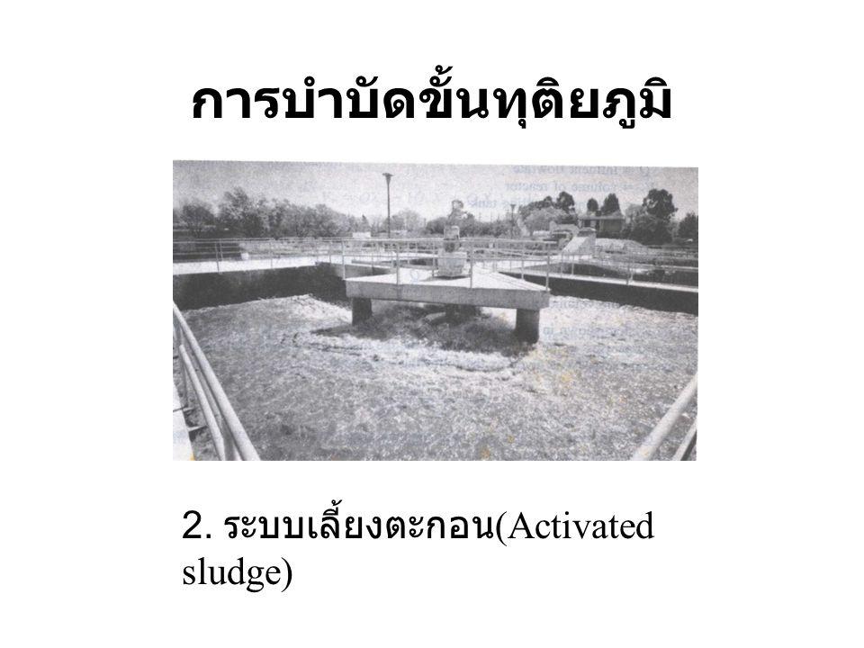 การบำบัดขั้นทุติยภูมิ 2. ระบบเลี้ยงตะกอน (Activated sludge)