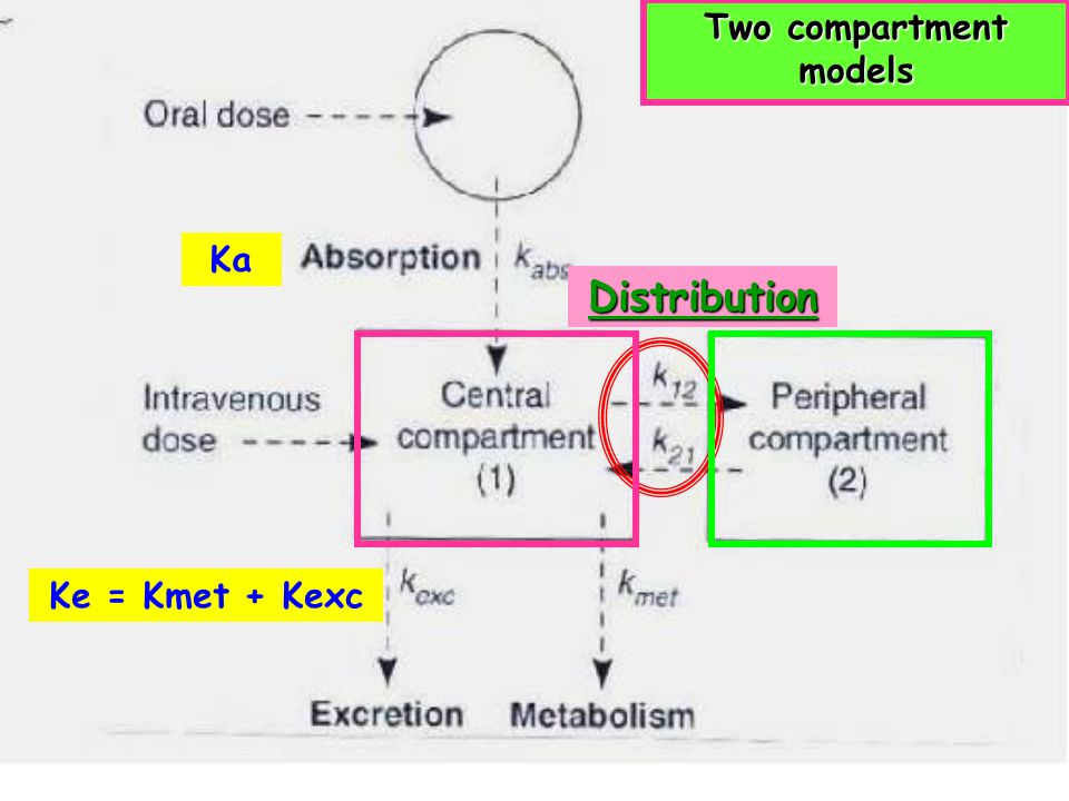 At steady state concentration (C ss ) Rate of infusion= Rate of elimination Fluctuation = การเปลี่ยนแปลงขึ้นลงของระดับยา ใน plasma Longer interval … M