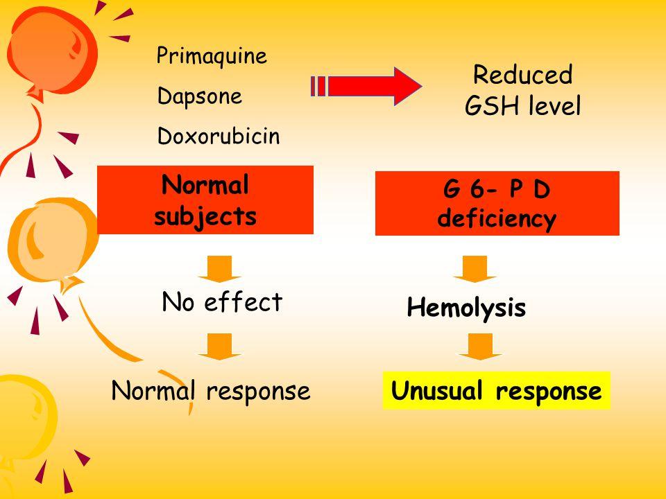 Primaquine Dapsone Doxorubicin Reduced GSH level No effect Hemolysis Normal responseUnusual response G 6- P D deficiency Normal subjects