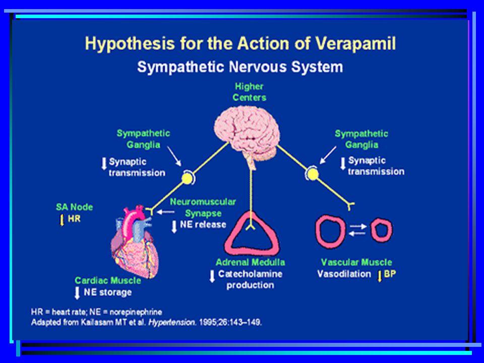 6. Other effects  มีผลเล็กน้อยต่อการหลั่งสารจาก ต่อมและ nerve ending ต่างๆ  Verapamil เคยมีการรายงานว่าทำให้ลด การหลั่ง insulin  การทดลองในหลอดทดลอ