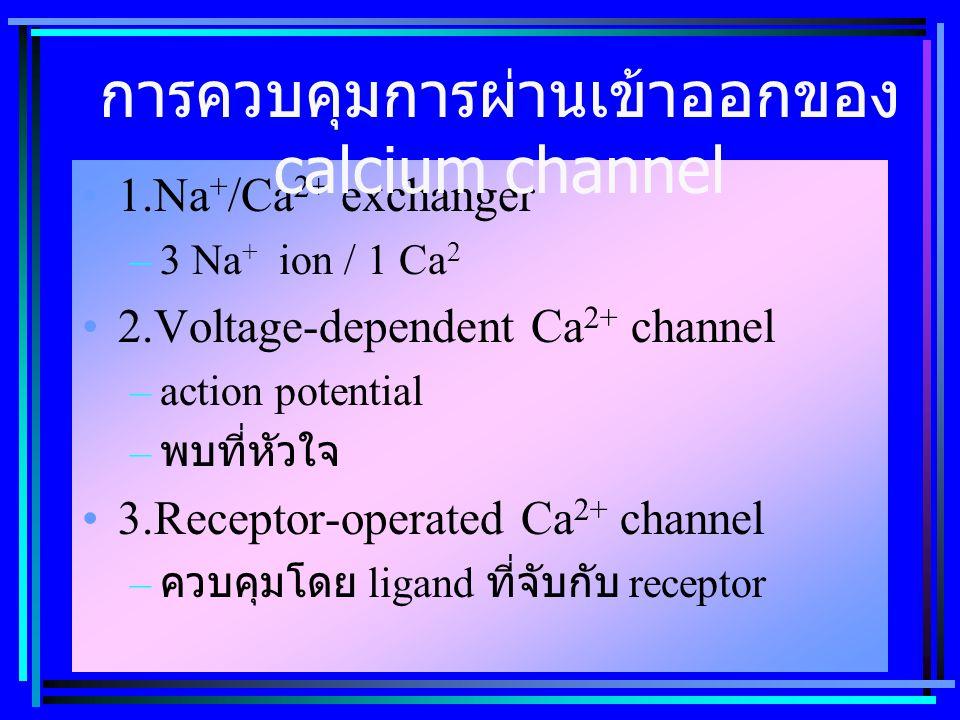 1.Na + /Ca 2+ exchanger –3 Na + ion / 1 Ca 2 2.Voltage-dependent Ca 2+ channel –action potential – พบที่หัวใจ 3.Receptor-operated Ca 2+ channel – ควบคุมโดย ligand ที่จับกับ receptor การควบคุมการผ่านเข้าออกของ calcium channel