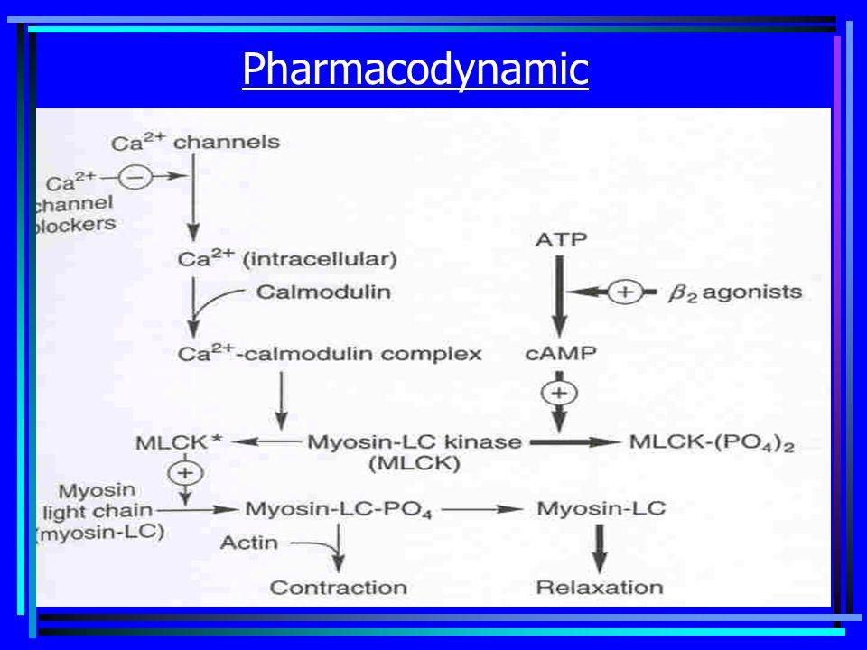 Pharmacodynamic