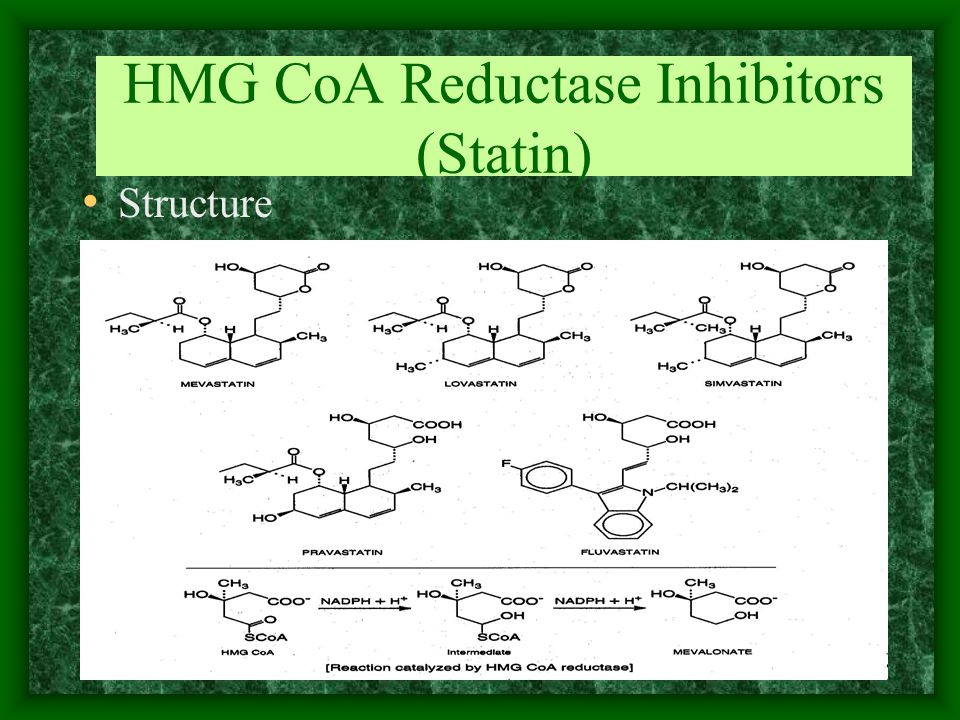 HMG CoA Reductase Inhibitors (Statin) Structure