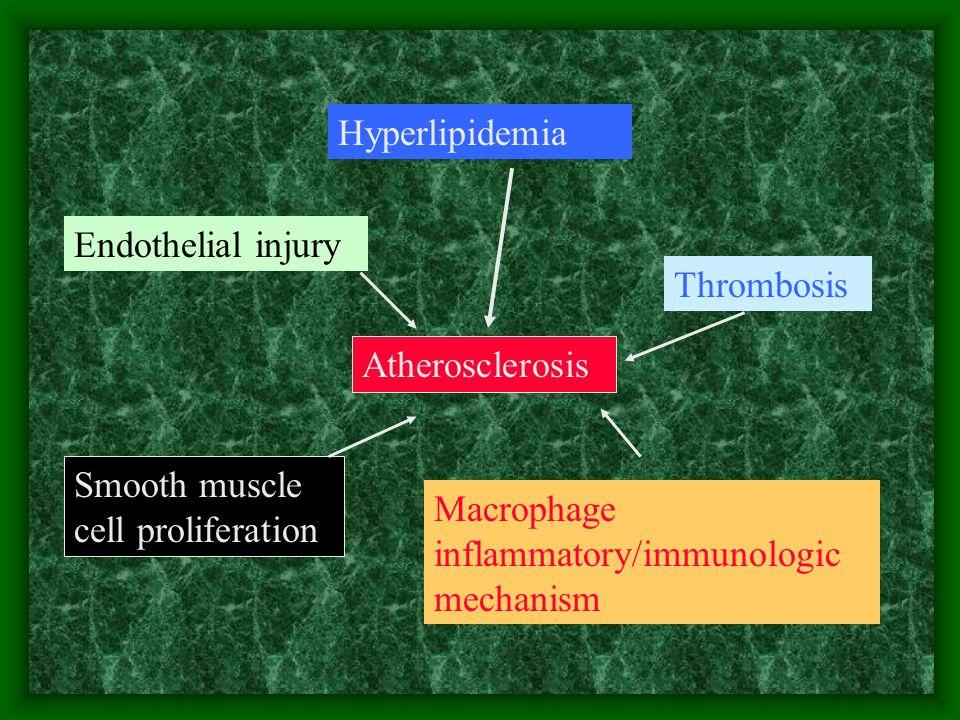 Hyperlipidemia Endothelial injury Thrombosis Atherosclerosis Smooth muscle cell proliferation Macrophage inflammatory/immunologic mechanism
