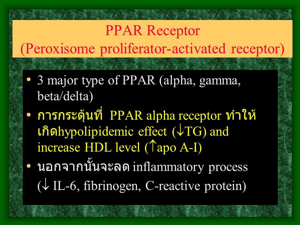 PPAR Receptor (Peroxisome proliferator-activated receptor) 3 major type of PPAR (alpha, gamma, beta/delta) การกระตุ้นที่ PPAR alpha receptor ทำให้ เกิด hypolipidemic effect (  TG) and increase HDL level (  apo A-I) นอกจากนั้นจะลด inflammatory process (  IL-6, fibrinogen, C-reactive protein)