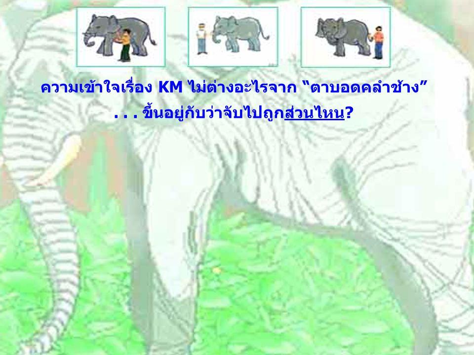 """ความเข้าใจเรื่อง KM ไม่ต่างอะไรจาก """"ตาบอดคลำช้าง""""... ขึ้นอยู่กับว่าจับไปถูกส่วนไหน?"""