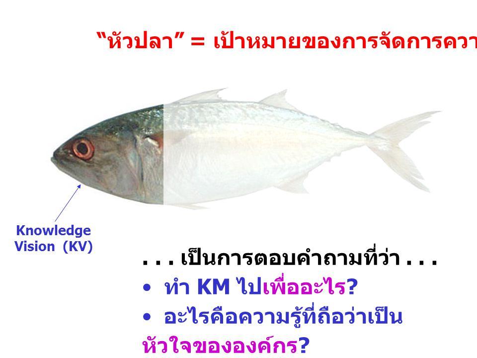 "KV Knowledge Vision (KV)... เป็นการตอบคำถามที่ว่า... ทำ KM ไปเพื่ออะไร ? อะไรคือความรู้ที่ถือว่าเป็น หัวใจขององค์กร ? "" หัวปลา "" = เป้าหมายของการจัดกา"