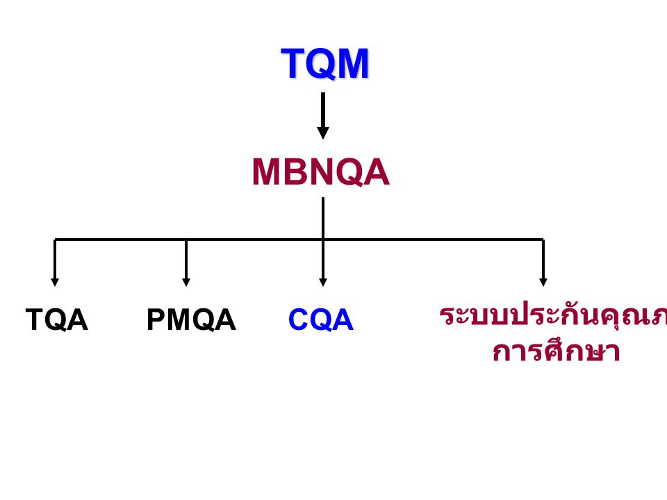 TQM MBNQA TQACQA ระบบประกันคุณภาพ การศึกษา PMQA