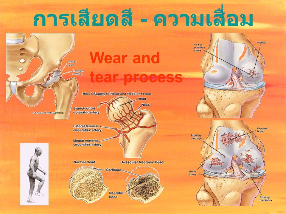 การเสียดสี - ความเสื่อม Wear and tear process