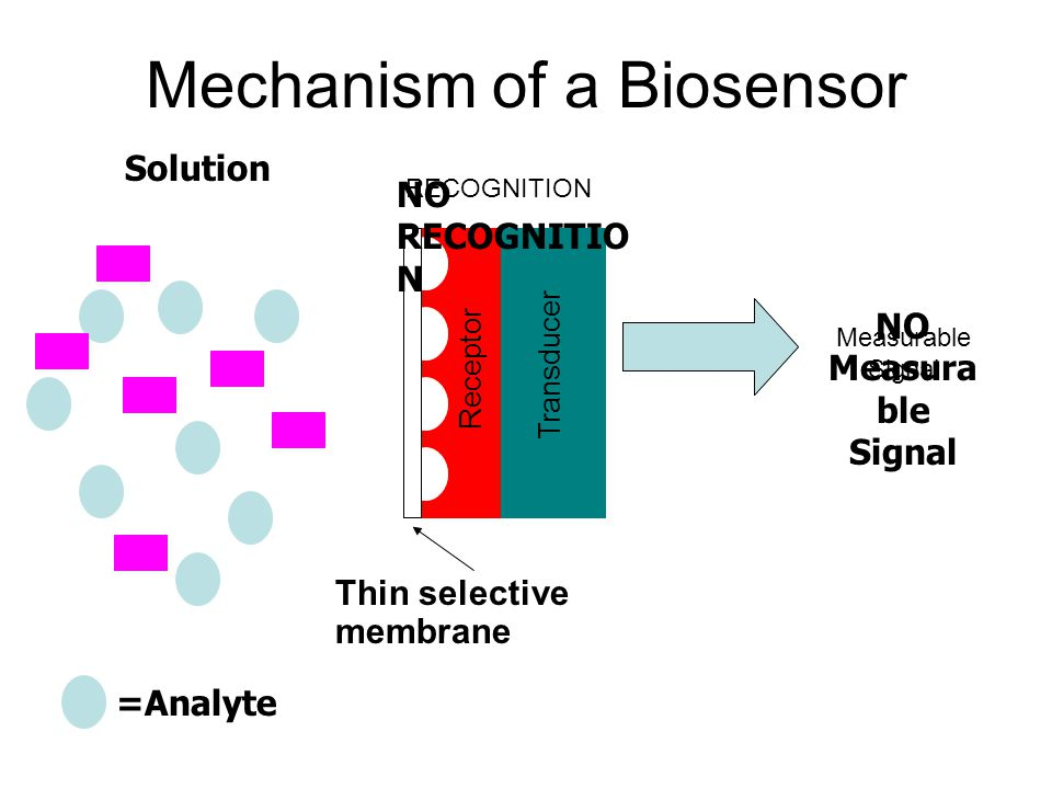 Mechanism of a Biosensor Transducer Receptor Measurable Signal =Analyte Solution NO Measura ble Signal RECOGNITION NO RECOGNITIO N Thin selective memb