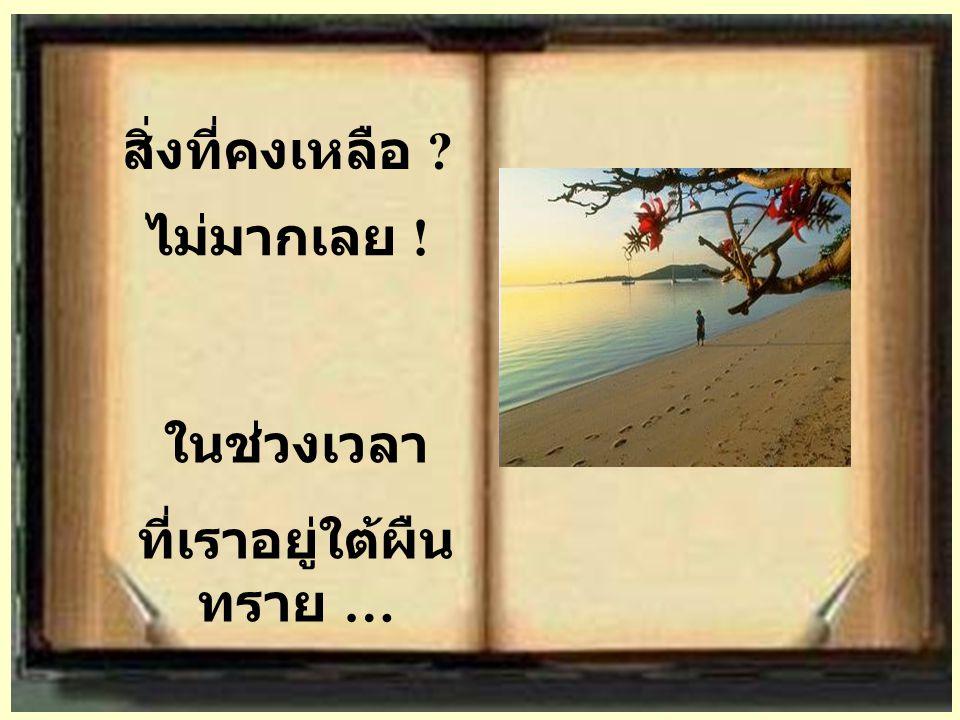 สิ่งที่คงเหลือ ? ในช่วงเวลา ที่เราอยู่ใต้ผืน ทราย … ไม่มากเลย !