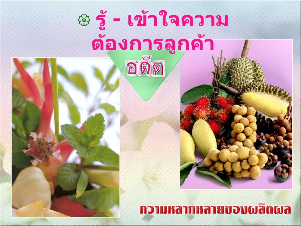 กฎระเบียบการนำเข้าผลไม้สดจากไทยไปญี่ปุ่น