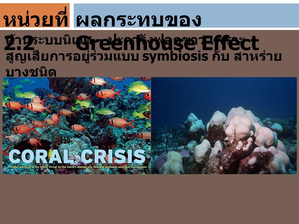 ผลกระทบของ Greenhouse Effect ด้านระบบนิเวศ – ปะการังฟอกขาว เพราะ สูญเสียการอยู่ร่วมแบบ symbiosis กับ สาหร่าย บางชนิด หน่วยที่ 2.2