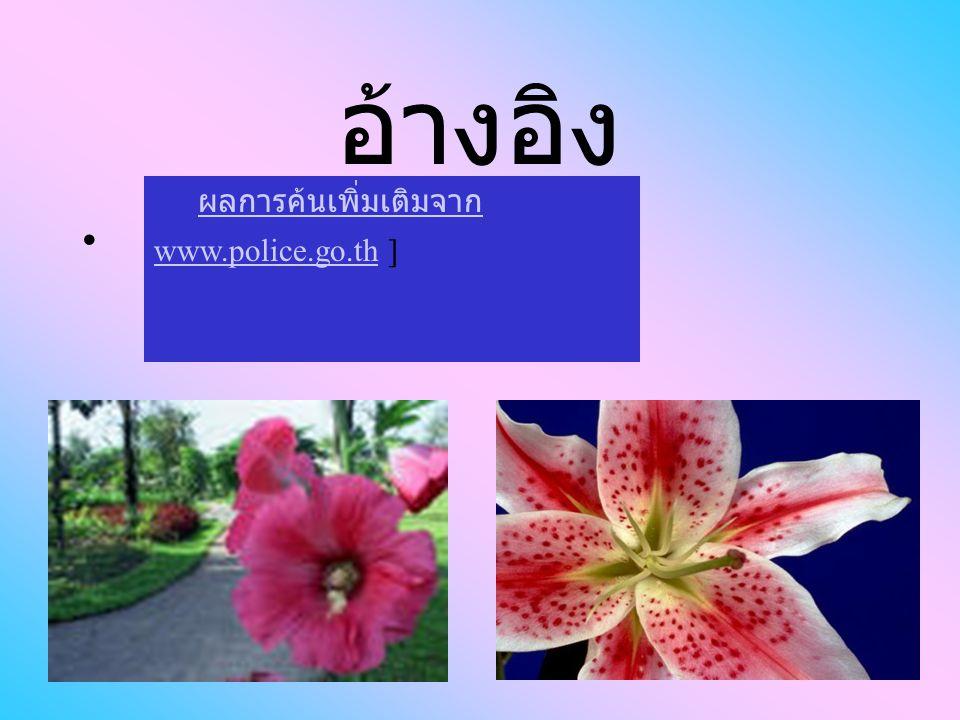 อ้างอิง ผลการค้นเพิ่มเติมจาก www.police.go.th ] ผลการค้นเพิ่มเติมจาก www.police.go.th
