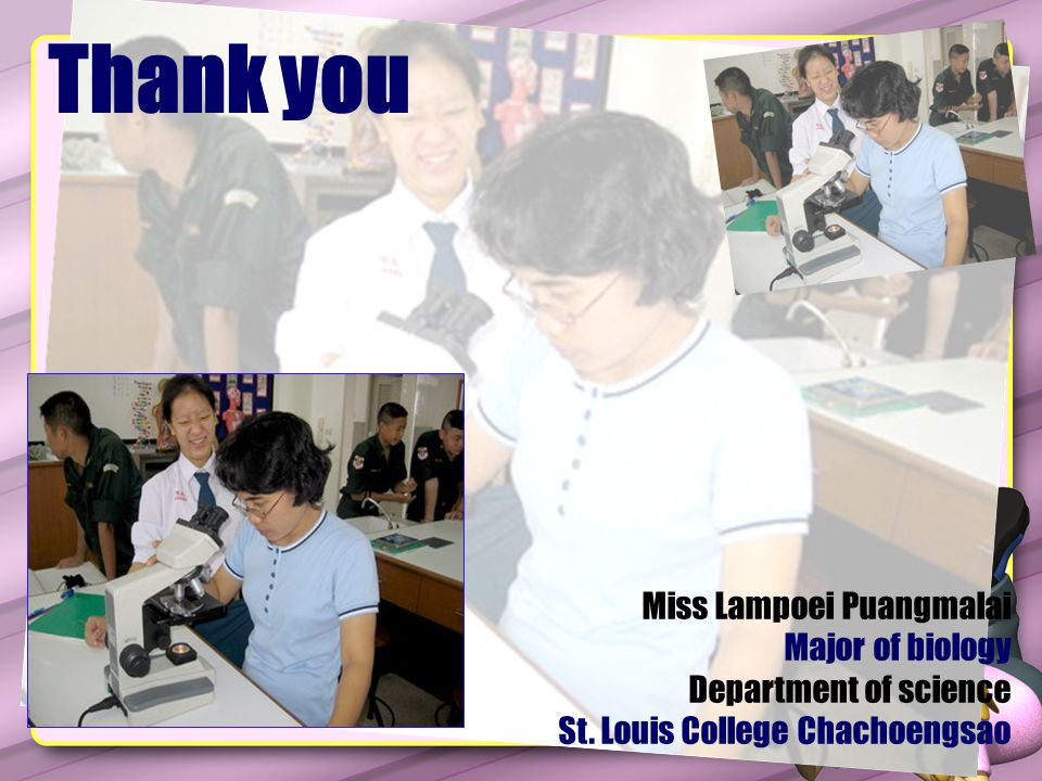 Miss Lampoei Puangmalai Major of biology Department of science St. Louis College Chachoengsao Thank you
