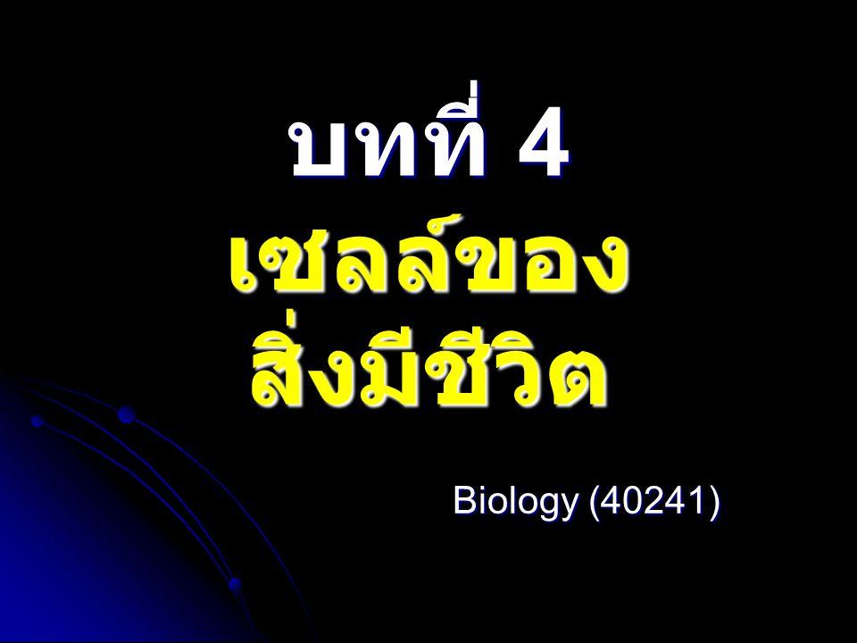 บทที่ 4 เซลล์ของสิ่งมีชีวิต 4.1 เซลล์และทฤษฎีเซลล์ 4.2 โครงสร้างของเซลล์ที่ศึกษาด้วยกล้อง จุลทรรศน์อิเล็กตรอน 4.2.1 นิวเคลียส 4.2.2 ไซโทพลาซึม 4.2.3 ส่วนที่ห่อหุ้มเซลล์ 4.3 การรักษาดุลยภาพของเซลล์ 4.3.1 การลำเลียงสารผ่านเยื่อหุ้มเซลล์ 4.3.2 การลำเลียงสารโดยไม่ผ่านเยื่อหุ้ม เซลล์ 4.4 การสื่อสารระหว่างเซลล์ 4.5 การแบ่งเซลล์ 4.5.1 การแบ่งเซลล์แบบไมโทซิส 4.5.2 การแบ่งเซลล์แบบไมโอซิส 4.6 การเปลี่ยนสภาพของเซลล์และการชรา ภาพของเซลล์ 4.7 เนื้อเยื่อ อวัยวะและระบบของร่างกาย
