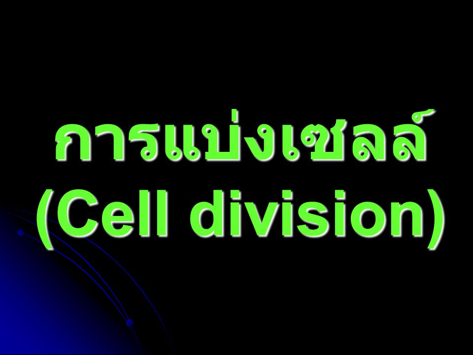 Why most cells are small ?