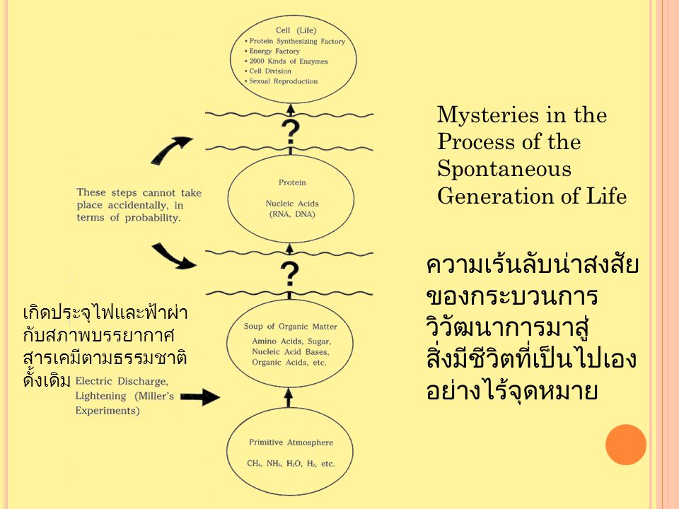 Mysteries in the Process of the Spontaneous Generation of Life ความเร้นลับน่าสงสัย ของกระบวนการ วิวัฒนาการมาสู่ สิ่งมีชีวิตที่เป็นไปเอง อย่างไร้จุดหมาย เกิดประจุไฟและฟ้าผ่า กับสภาพบรรยากาศ สารเคมีตามธรรมชาติ ดั้งเดิม