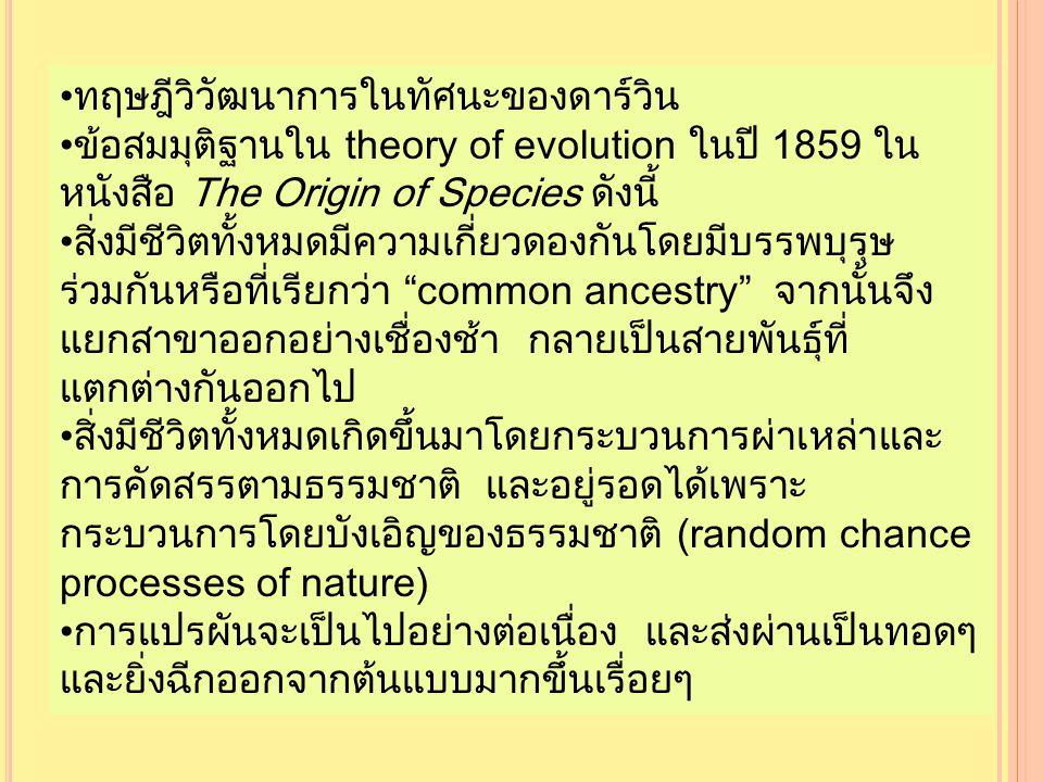 ทฤษฎีวิวัฒนาการในทัศนะของดาร์วิน ข้อสมมุติฐานใน theory of evolution ในปี 1859 ใน หนังสือ The Origin of Species ดังนี้ สิ่งมีชีวิตทั้งหมดมีความเกี่ยวดองกันโดยมีบรรพบุรุษ ร่วมกันหรือที่เรียกว่า common ancestry จากนั้นจึง แยกสาขาออกอย่างเชื่องช้า กลายเป็นสายพันธุ์ที่ แตกต่างกันออกไป สิ่งมีชีวิตทั้งหมดเกิดขึ้นมาโดยกระบวนการผ่าเหล่าและ การคัดสรรตามธรรมชาติ และอยู่รอดได้เพราะ กระบวนการโดยบังเอิญของธรรมชาติ (random chance processes of nature) การแปรผันจะเป็นไปอย่างต่อเนื่อง และส่งผ่านเป็นทอดๆ และยิ่งฉีกออกจากต้นแบบมากขึ้นเรื่อยๆ ทฤษฎีวิวัฒนาการในทัศนะของดาร์วิน ข้อสมมุติฐานใน theory of evolution ในปี 1859 ใน หนังสือ The Origin of Species ดังนี้ สิ่งมีชีวิตทั้งหมดมีความเกี่ยวดองกันโดยมีบรรพบุรุษ ร่วมกันหรือที่เรียกว่า common ancestry จากนั้นจึง แยกสาขาออกอย่างเชื่องช้า กลายเป็นสายพันธุ์ที่ แตกต่างกันออกไป สิ่งมีชีวิตทั้งหมดเกิดขึ้นมาโดยกระบวนการผ่าเหล่าและ การคัดสรรตามธรรมชาติ และอยู่รอดได้เพราะ กระบวนการโดยบังเอิญของธรรมชาติ (random chance processes of nature) การแปรผันจะเป็นไปอย่างต่อเนื่อง และส่งผ่านเป็นทอดๆ และยิ่งฉีกออกจากต้นแบบมากขึ้นเรื่อยๆ