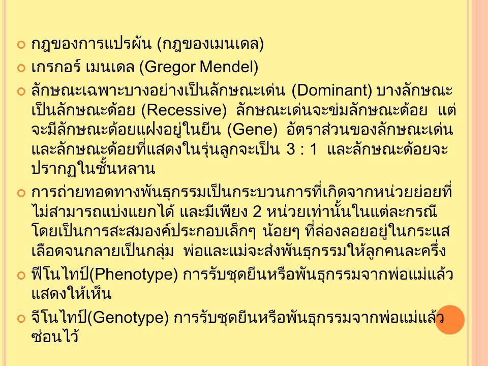 กฎของการแปรผัน (กฎของเมนเดล) เกรกอร์ เมนเดล (Gregor Mendel) ลักษณะเฉพาะบางอย่างเป็นลักษณะเด่น (Dominant) บางลักษณะ เป็นลักษณะด้อย (Recessive) ลักษณะเด่นจะข่มลักษณะด้อย แต่ จะมีลักษณะด้อยแฝงอยู่ในยีน (Gene) อัตราส่วนของลักษณะเด่น และลักษณะด้อยที่แสดงในรุ่นลูกจะเป็น 3 : 1 และลักษณะด้อยจะ ปรากฏในชั้นหลาน การถ่ายทอดทางพันธุกรรมเป็นกระบวนการที่เกิดจากหน่วยย่อยที่ ไม่สามารถแบ่งแยกได้ และมีเพียง 2 หน่วยเท่านั้นในแต่ละกรณี โดยเป็นการสะสมองค์ประกอบเล็กๆ น้อยๆ ที่ล่องลอยอยู่ในกระแส เลือดจนกลายเป็นกลุ่ม พ่อและแม่จะส่งพันธุกรรมให้ลูกคนละครึ่ง ฟีโนไทป์(Phenotype) การรับชุดยีนหรือพันธุกรรมจากพ่อแม่แล้ว แสดงให้เห็น จีโนไทป์(Genotype) การรับชุดยีนหรือพันธุกรรมจากพ่อแม่แล้ว ซ่อนไว้