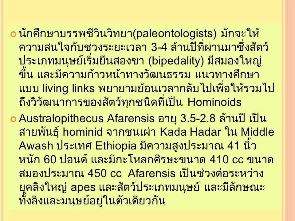 นักศึกษาบรรพชีวินวิทยา(paleontologists) มักจะให้ ความสนใจกับช่วงระยะเวลา 3-4 ล้านปีที่ผ่านมาซึ่งสัตว์ ประเภทมนุษย์เริ่มยืนสองขา (bipedality) มีสมองใหญ่ ขึ้น และมีความก้าวหน้าทางวัฒนธรรม แนวทางศึกษา แบบ living links พยายามย้อนเวลากลับไปเพื่อให้รวมไป ถึงวิวัฒนาการของสัตว์ทุกชนิดที่เป็น Hominoids Australopithecus Afarensis อายุ 3.5-2.8 ล้านปี เป็น สายพันธุ์ hominid จากชนเผ่า Kada Hadar ใน Middle Awash ประเทศ Ethiopia มีความสูงประมาณ 41 นิ้ว หนัก 60 ปอนด์ และมีกะโหลกศีรษะขนาด 410 cc ขนาด สมองประมาณ 450 cc Afarensis เป็นช่วงต่อระหว่าง ยุคลิงใหญ่ apes และสัตว์ประเภทมนุษย์ และมีลักษณะ ทั้งลิงและมนุษย์อยู่ในตัวเดียวกัน นักศึกษาบรรพชีวินวิทยา(paleontologists) มักจะให้ ความสนใจกับช่วงระยะเวลา 3-4 ล้านปีที่ผ่านมาซึ่งสัตว์ ประเภทมนุษย์เริ่มยืนสองขา (bipedality) มีสมองใหญ่ ขึ้น และมีความก้าวหน้าทางวัฒนธรรม แนวทางศึกษา แบบ living links พยายามย้อนเวลากลับไปเพื่อให้รวมไป ถึงวิวัฒนาการของสัตว์ทุกชนิดที่เป็น Hominoids Australopithecus Afarensis อายุ 3.5-2.8 ล้านปี เป็น สายพันธุ์ hominid จากชนเผ่า Kada Hadar ใน Middle Awash ประเทศ Ethiopia มีความสูงประมาณ 41 นิ้ว หนัก 60 ปอนด์ และมีกะโหลกศีรษะขนาด 410 cc ขนาด สมองประมาณ 450 cc Afarensis เป็นช่วงต่อระหว่าง ยุคลิงใหญ่ apes และสัตว์ประเภทมนุษย์ และมีลักษณะ ทั้งลิงและมนุษย์อยู่ในตัวเดียวกัน