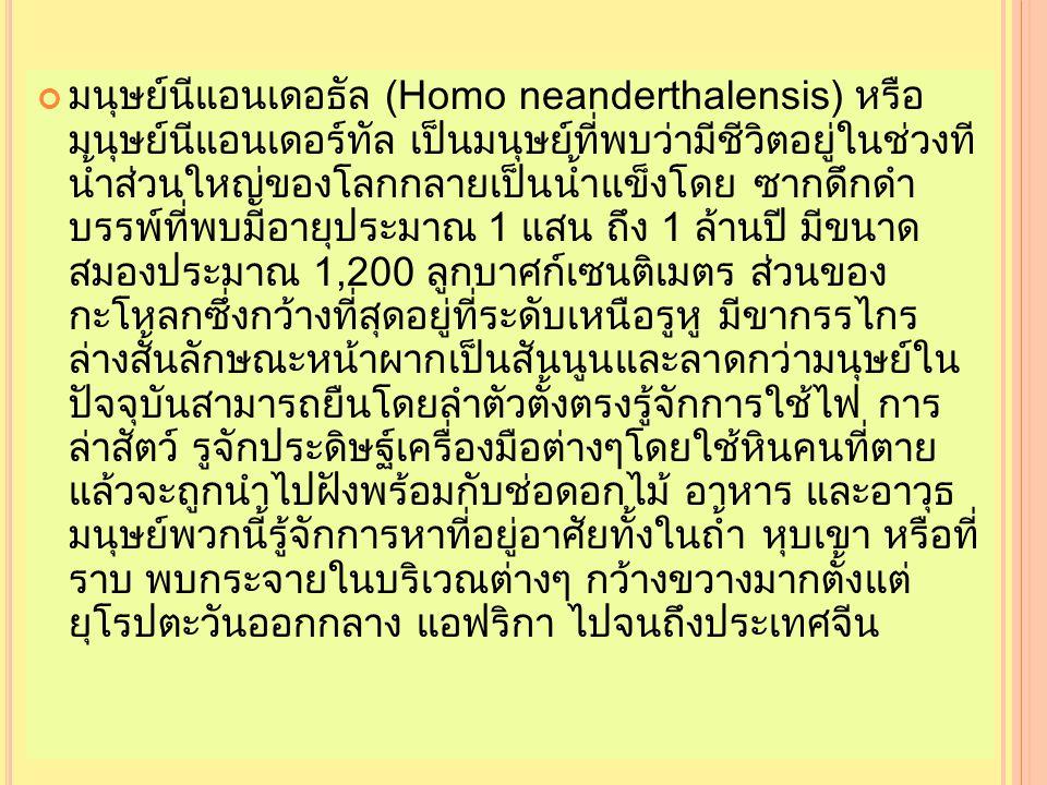 มนุษย์นีแอนเดอธัล (Homo neanderthalensis) หรือ มนุษย์นีแอนเดอร์ทัล เป็นมนุษย์ที่พบว่ามีชีวิตอยู่ในช่วงที น้ำส่วนใหญ่ของโลกกลายเป็นน้ำแข็งโดย ซากดึกดำ บรรพ์ที่พบมีอายุประมาณ 1 แสน ถึง 1 ล้านปี มีขนาด สมองประมาณ 1,200 ลูกบาศก์เซนติเมตร ส่วนของ กะโหลกซึ่งกว้างที่สุดอยู่ที่ระดับเหนือรูหู มีขากรรไกร ล่างสั้นลักษณะหน้าผากเป็นสันนูนและลาดกว่ามนุษย์ใน ปัจจุบันสามารถยืนโดยลำตัวตั้งตรงรู้จักการใช้ไฟ การ ล่าสัตว์ รูจักประดิษฐ์เครื่องมือต่างๆโดยใช้หินคนที่ตาย แล้วจะถูกนำไปฝังพร้อมกับช่อดอกไม้ อาหาร และอาวุธ มนุษย์พวกนี้รู้จักการหาที่อยู่อาศัยทั้งในถ้ำ หุบเขา หรือที่ ราบ พบกระจายในบริเวณต่างๆ กว้างขวางมากตั้งแต่ ยุโรปตะวันออกกลาง แอฟริกา ไปจนถึงประเทศจีน