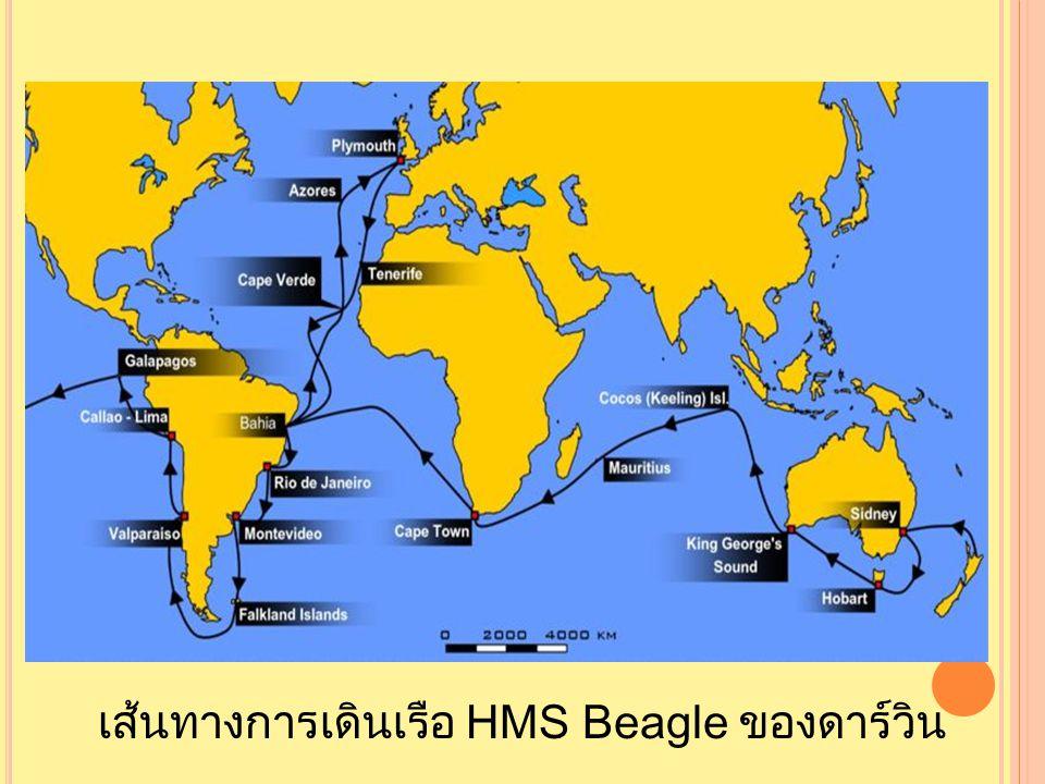 เส้นทางการเดินเรือ HMS Beagle ของดาร์วิน