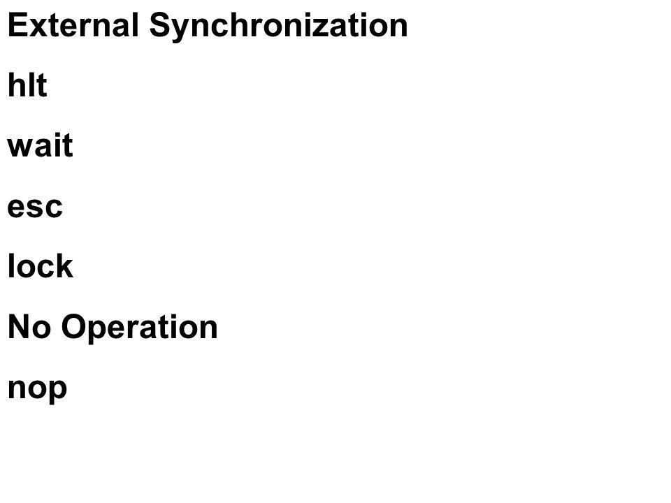 External Synchronization hlt wait esc lock No Operation nop