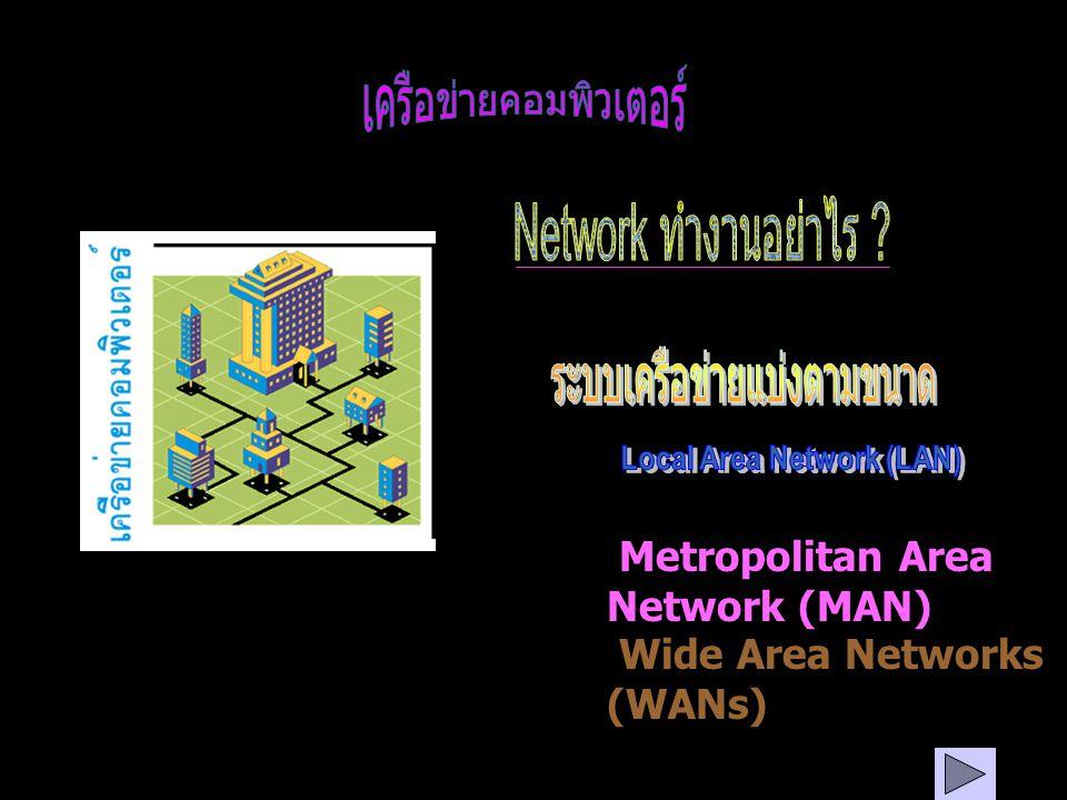 Metropolitan Area Network (MAN) Wide Area Networks (WANs)