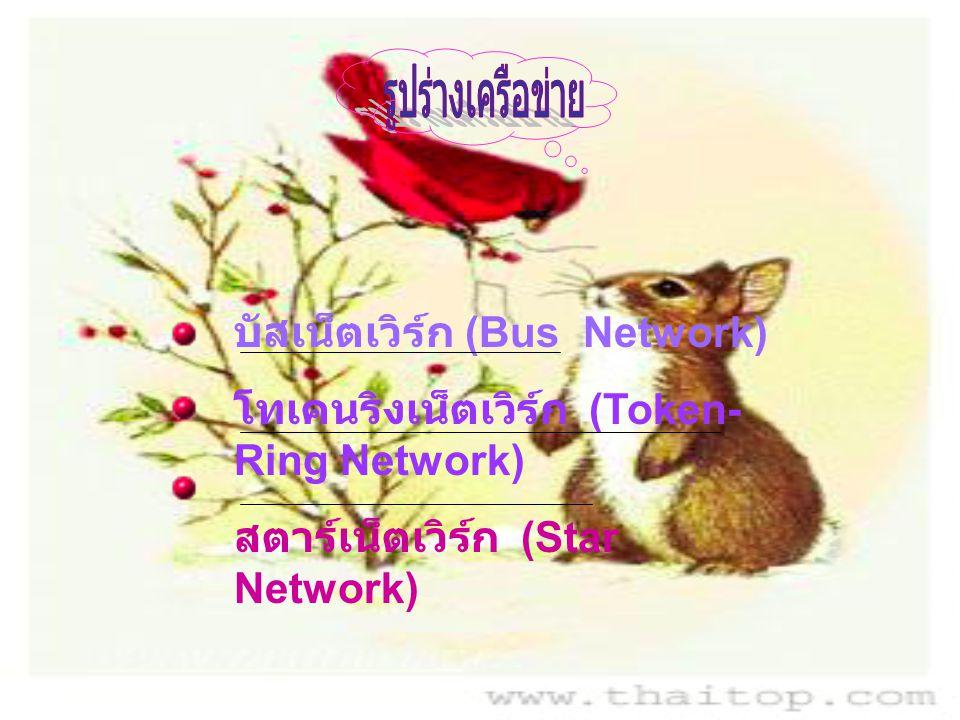 บัสเน็ตเวิร์ก (Bus Network) โทเคนริงเน็ตเวิร์ก (Token- Ring Network) สตาร์เน็ตเวิร์ก (Star Network)