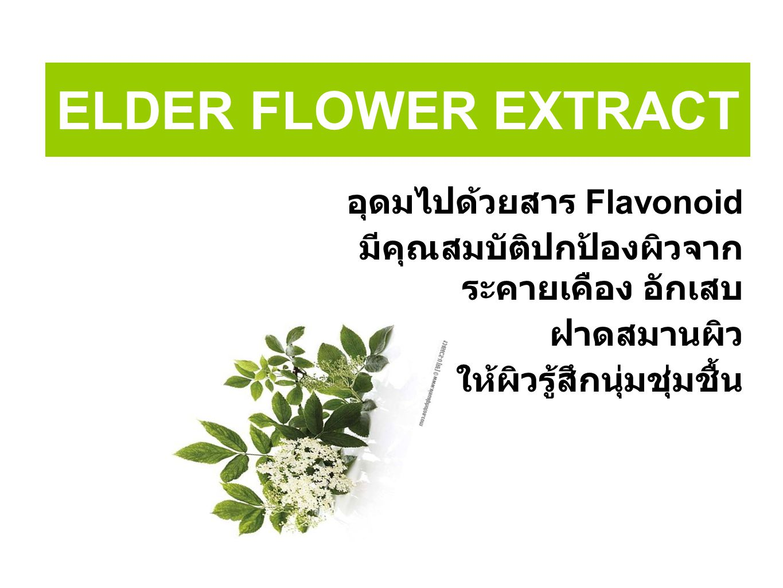ELDER FLOWER EXTRACT อุดมไปด้วยสาร Flavonoid มีคุณสมบัติปกป้องผิวจาก ระคายเคือง อักเสบ ฝาดสมานผิว ให้ผิวรู้สึกนุ่มชุ่มชื้น