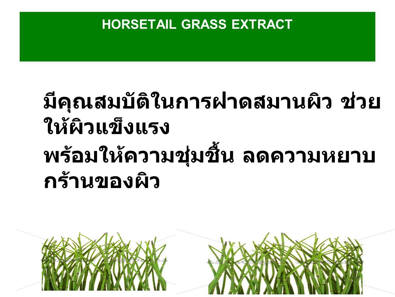 HORSETAIL GRASS EXTRACT มีคุณสมบัติในการฝาดสมานผิว ช่วย ให้ผิวแข็งแรง พร้อมให้ความชุ่มชื้น ลดความหยาบ กร้านของผิว
