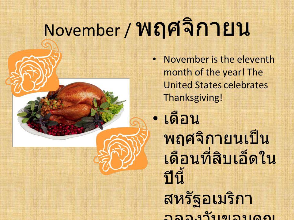 November / พฤศจิกายน November is the eleventh month of the year! The United States celebrates Thanksgiving! เดือน พฤศจิกายนเป็น เดือนที่สิบเอ็ดใน ปีนี