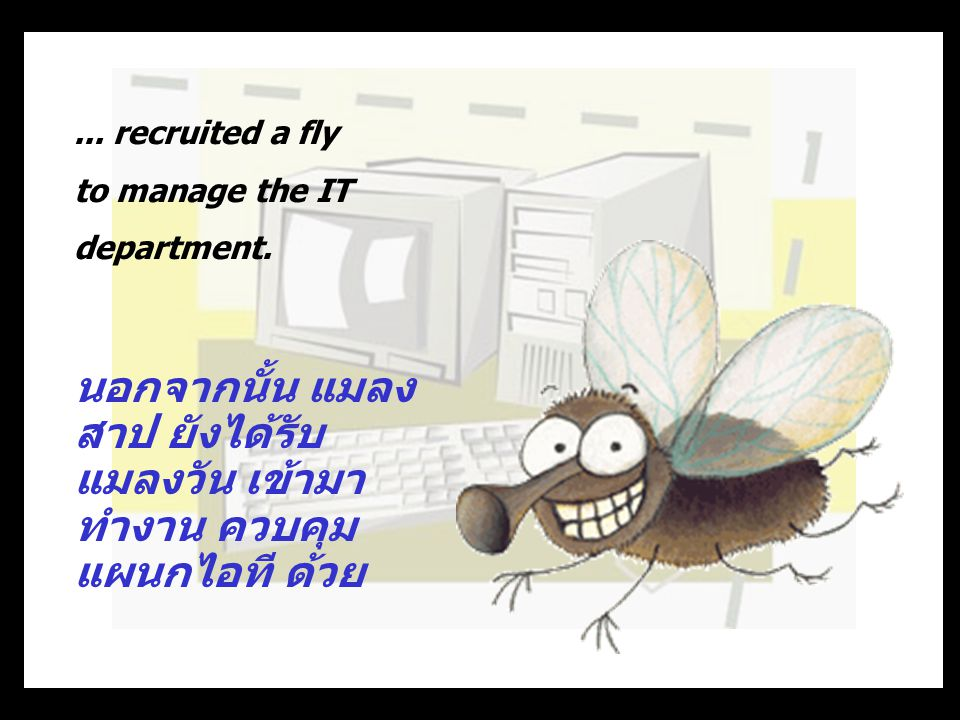 ...recruited a fly to manage the IT department.