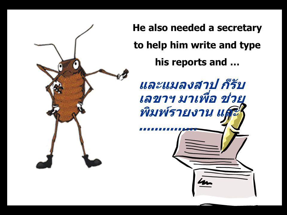He also needed a secretary to help him write and type his reports and … และแมลงสาป ก็รับ เลขาฯ มาเพื่อ ช่วย พิมพ์รายงาน และ...............