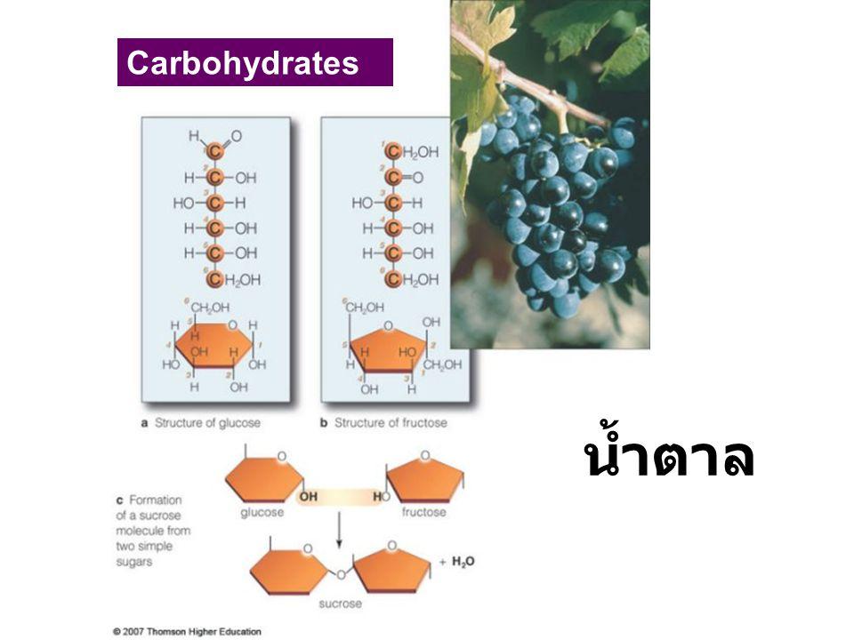 น้ำตาล Carbohydrates