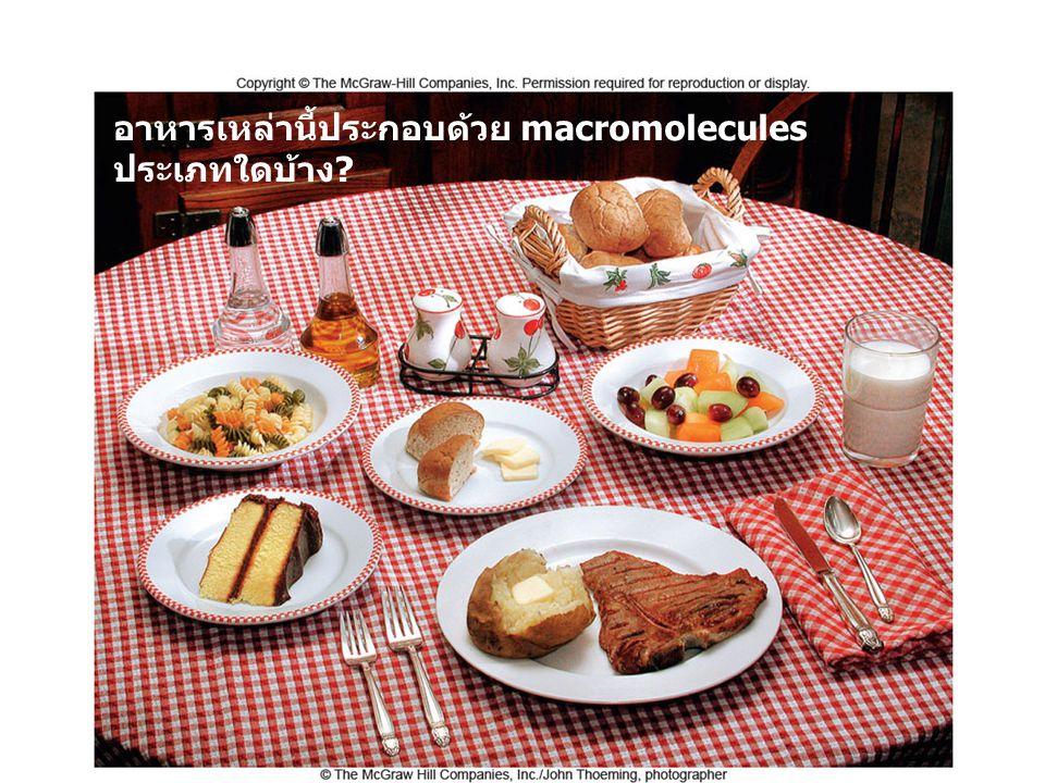 อาหารเหล่านี้ประกอบด้วย macromolecules ประเภทใดบ้าง?