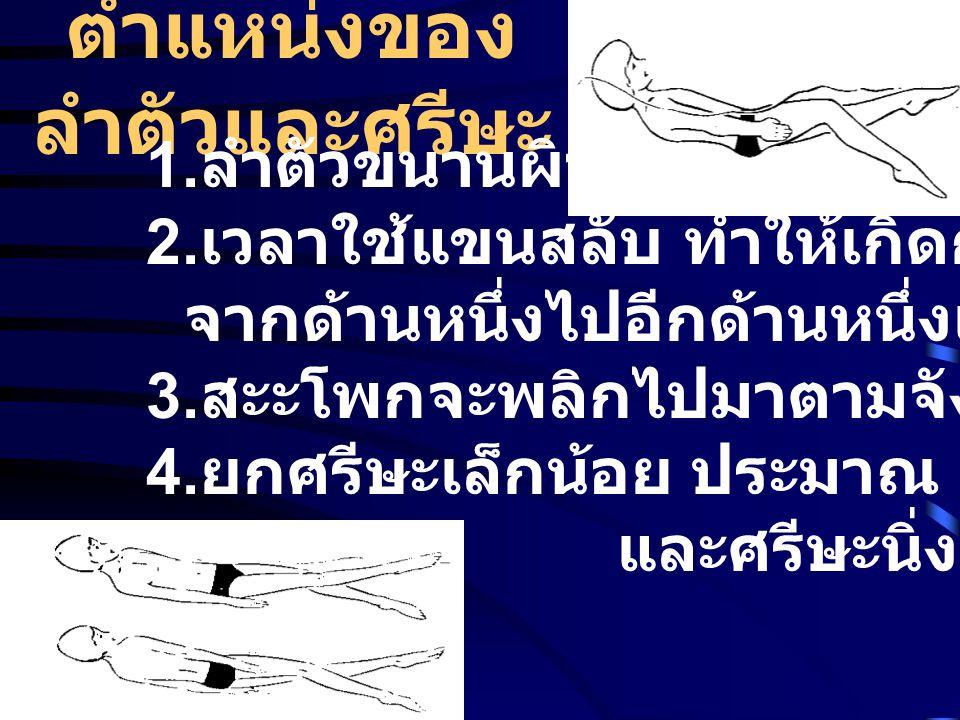 ตำแหน่งของ ลำตัวและศรีษะ 1. ลำตัวขนานผิวน้ำ 2. เวลาใช้แขนสลับ ทำให้เกิดการกลิ้งของลำตัว จากด้านหนึ่งไปอีกด้านหนึ่งเหมือนท่าฟรีสไตล์ 3. สะะโพกจะพลิกไปม